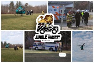 jungle-habitat-west-milford